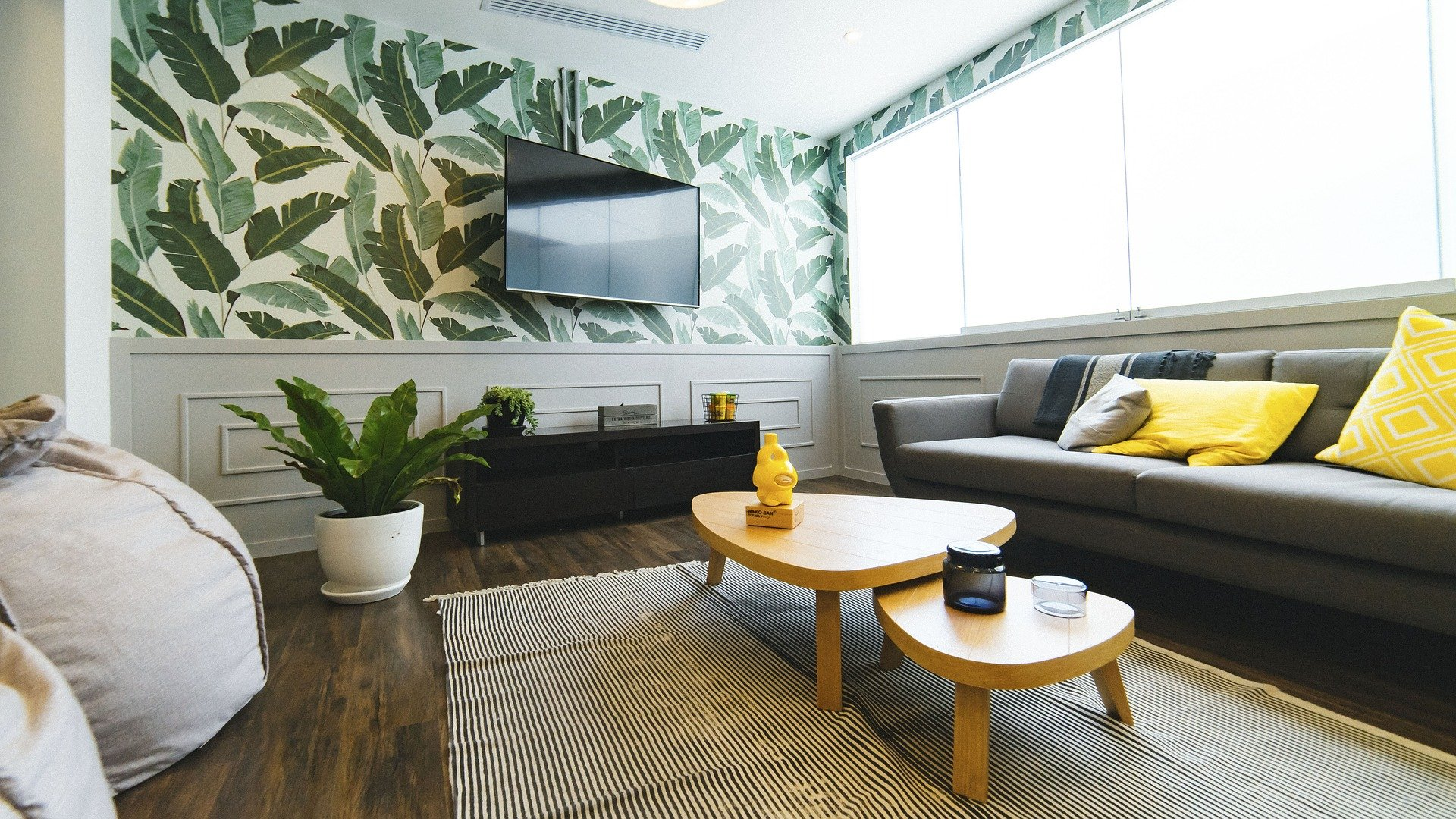 newly remodeled living room with plants and artwork mounted on wall